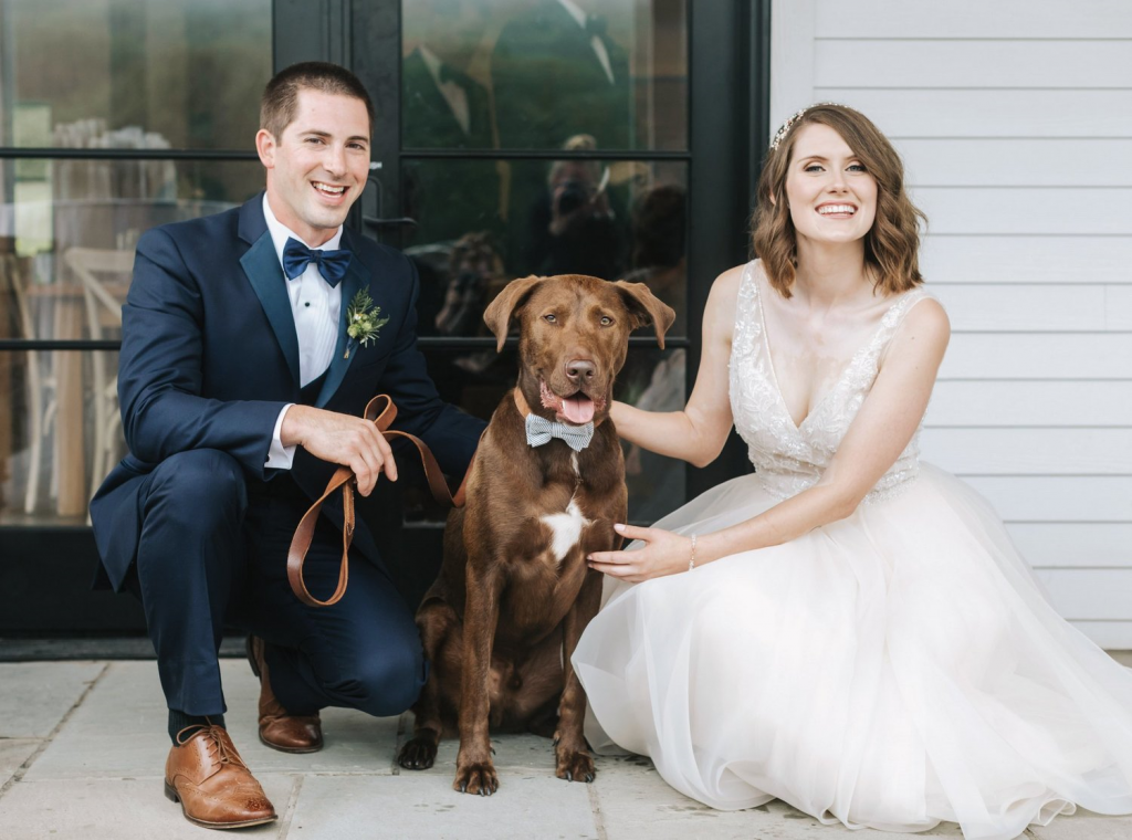 Pets- Ways to Personalize Your Wedding